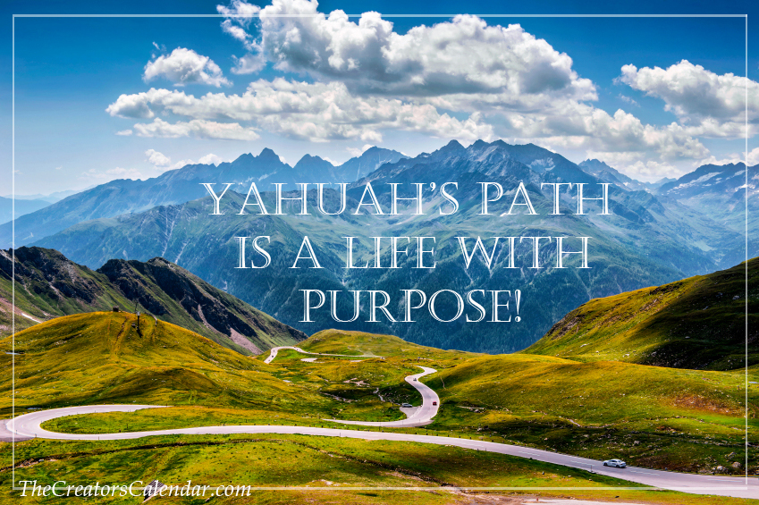 Path of purpose 2