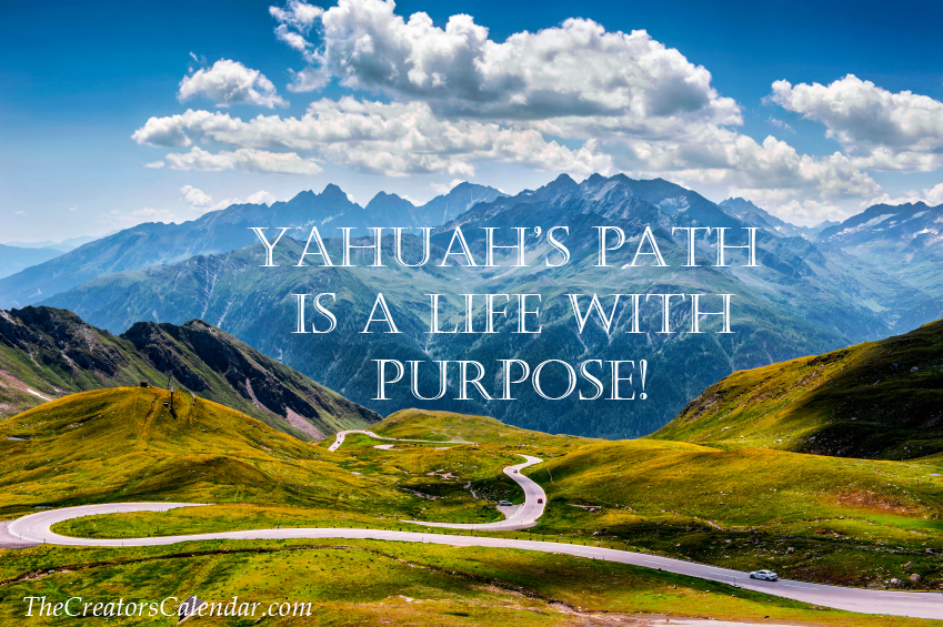 Path of purpose