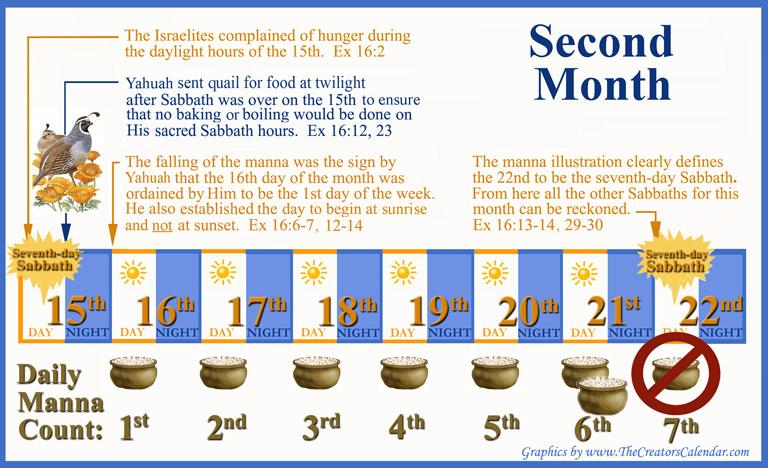 manna-for-six-days