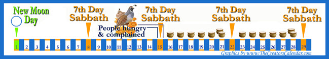 manna-for-six-days-a-week