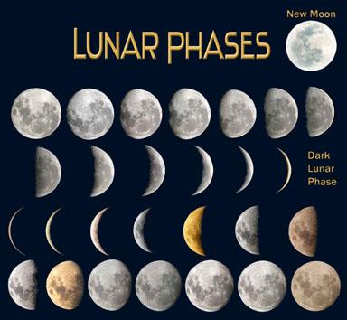 lunar-phases