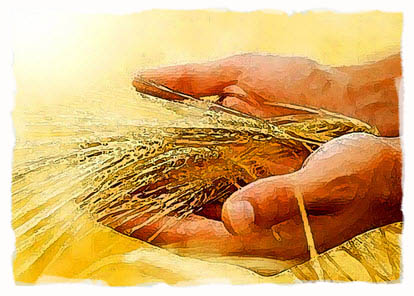 eating-manna-and-grain